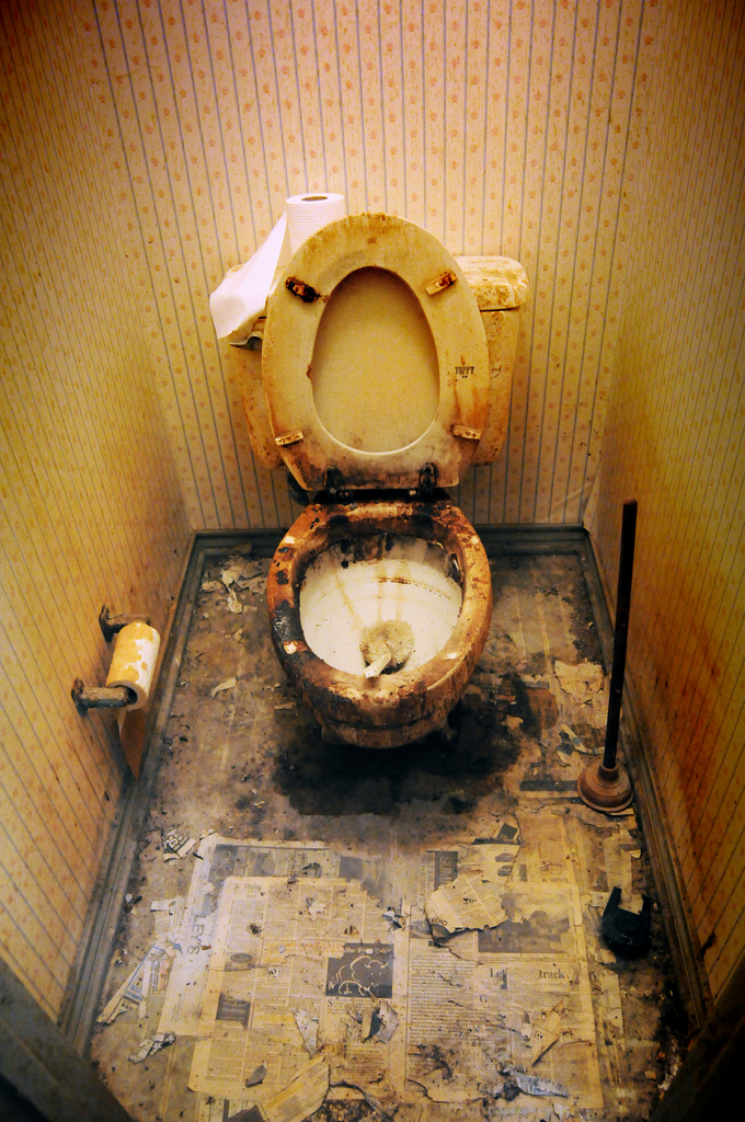 dirty toilets The main concern with toilets is that they can harbour germs and become very dirty, but if you routinely clean your toilet there's no need to worry about this happening however, with busy work and home lives to juggle, it can be common to neglect your toilet cleaning routine.