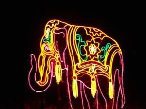Your Elephant